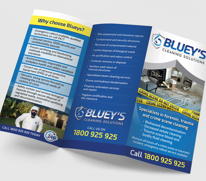 Blueys-DL-Flyer